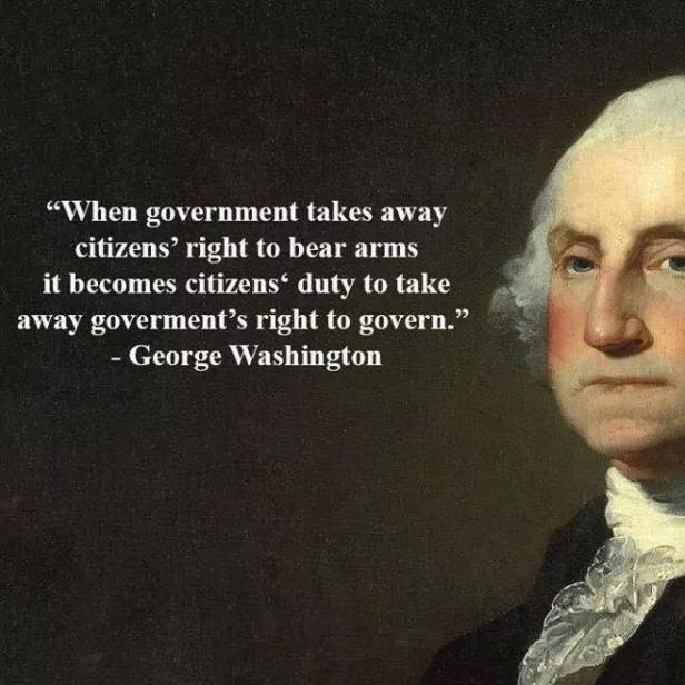 george-washington-when-government-takes-away-citizens-rights-to-bear-arms.jpg